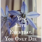 Choosing to LIVE Everyday!